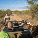 Safari in einem Private Game Reserve